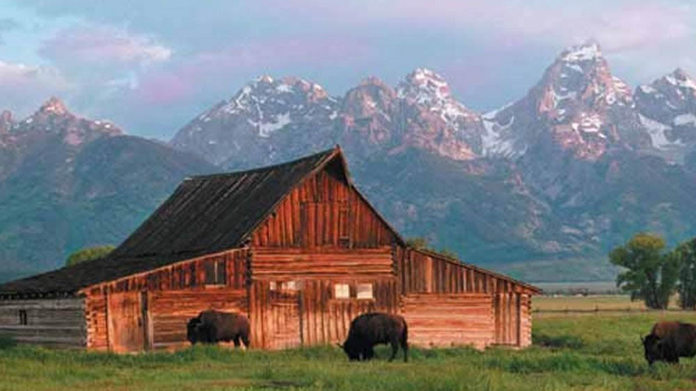 See jackson hole wyoming cabin rentals for Cabin rentals in jackson hole wy