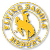 Flying Saddle Resort – Webcam Sponsor