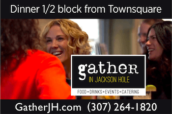 Gather – Webcam Sponsor