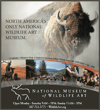 National Museum of Wildlife Art – Webcam Sponsor