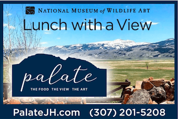 Palate National Museum Wildlife Art Webcam Sponsor
