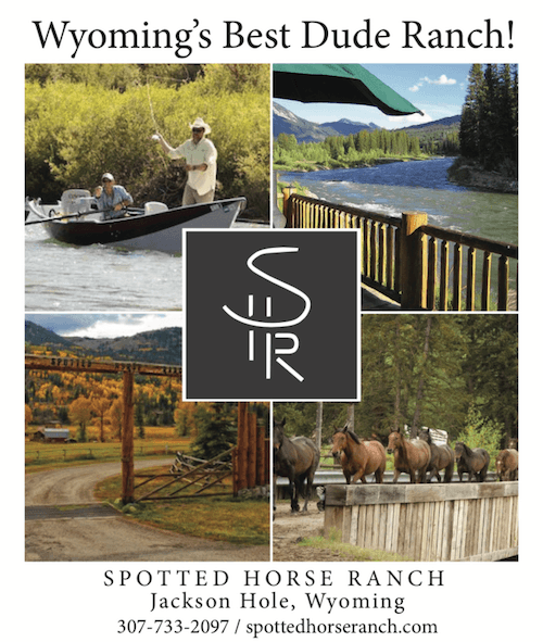 Spotted Horse Ranch – Webcam Sponsor