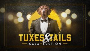 PAWS' Tuxes & Tails Gala and Auction @ Center for the Arts | Jackson | Wyoming | United States